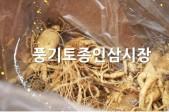 풍기토종인삼시장  홍보…사진